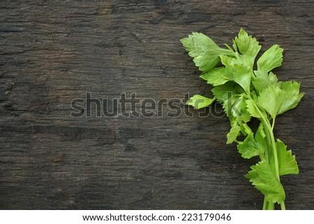 Organic vegetables - celery - stock photo