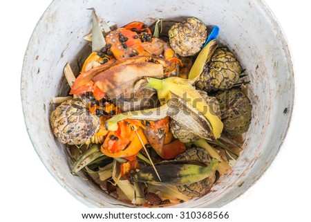 Organic waste of fruits in garbage - stock photo
