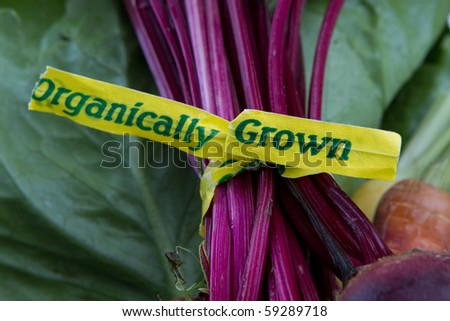 organically grown label - stock photo