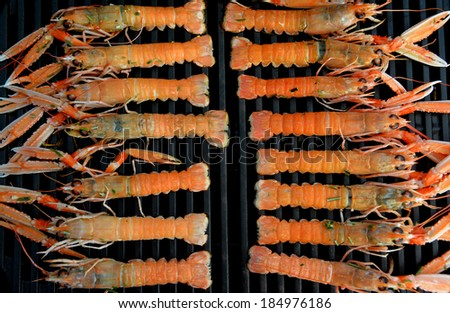 Organized grilled Scampi - stock photo