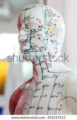 Oriental Medicine model no.9 - stock photo