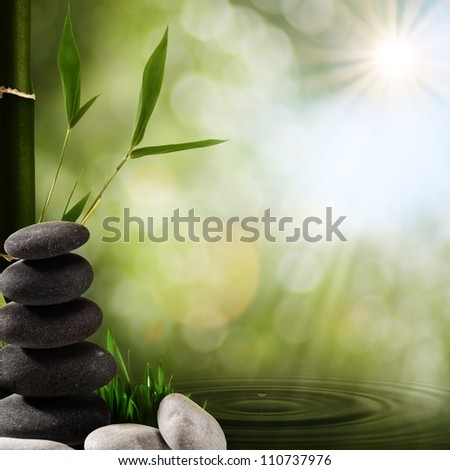 Oriental spa backgrounds with bamboo foliage and rain drops - stock photo