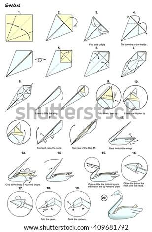 origami animal bird swan diagram instructions stock illustration rh shutterstock com origami swan hoang tien quyet diagram origami crane diagram