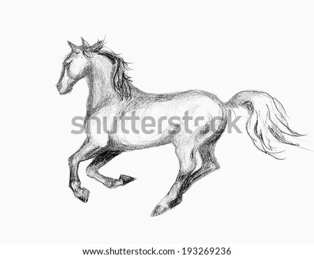original art, hand drawing of running horse - stock photo