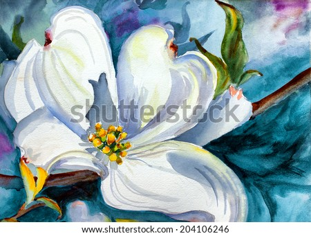 original art, watercolor painting of dogwood tree bloom - stock photo
