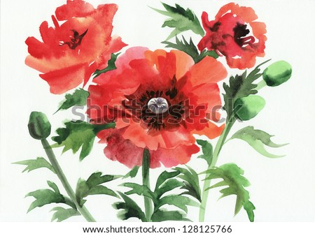 Original art, watercolor painting of red poppies - stock photo