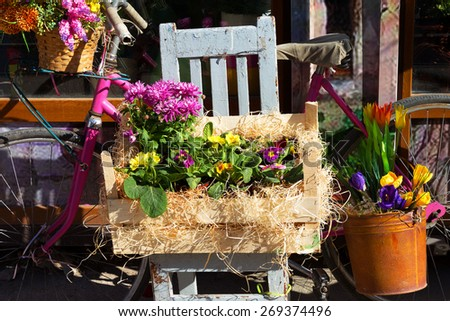 Original ornamental decoration bouquet of spring flowers in a wooden box and iron bucket and retro bike. Flowers in bright sunlight on a contrasting background of a contrasting shade. - stock photo
