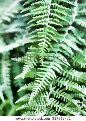Original photo of green ferns transformed into a digital illustration - stock photo