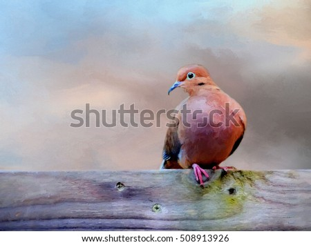 Original photograph of a mourning dove transformed into a colorful painting