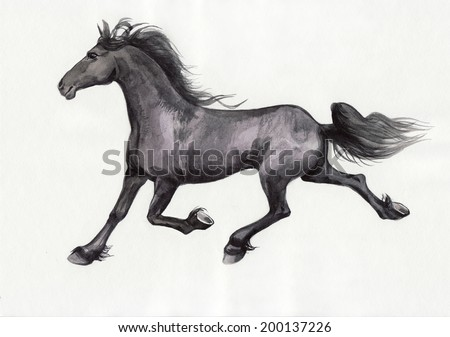 Original watercolor painting of a black running horse isolated on white background.