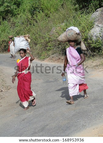 ORISSA INDIA - Nov 11 - Women carry goods on their heads for  weekly market  in Orissa, India