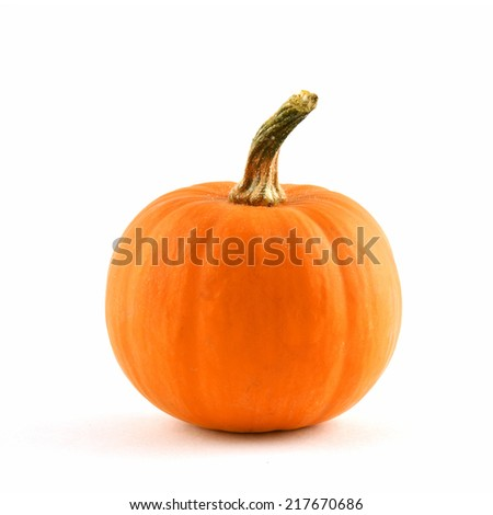 Ornamental miniature pumpkin with curled stalk on white background in square format