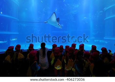 OSAKA, JAPAN - NOV 2: Unidentified many children learning and education of sea creatures at the Osaka Aquarium Kaiyukan on November 2, 2015 in Osaka, Japan.