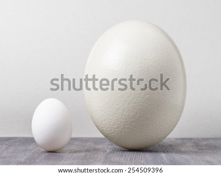 Ostrich egg and chicken egg on a black wooden table. Big and small - different, but similar. Organic healthy food, eco product. - stock photo