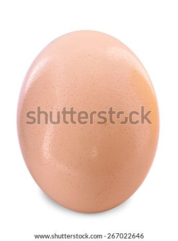 Ostrich egg on a white background. - stock photo