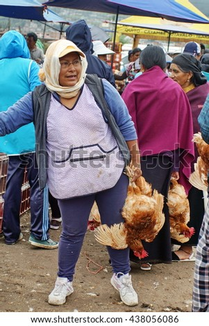 OTAVALO, ECUADOR - CIRCA MARCH 5, 2016: Woman selling chickens, hanging upside down, at the Otavalo Animal Market