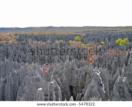Other Tsingy peaks forest in Madagascar. - stock photo