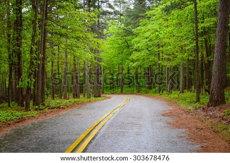 Ouachita National Forest - stock photo