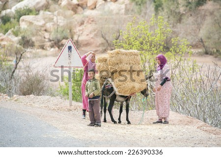OUNILA VALLEY, MOROCCO, MARCH 9, 2014. Two women and a young boy with a donkey, transporting hay in Ounila Valley, Morocco, on March 9th, 2014. - stock photo