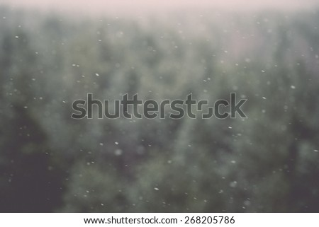 out of focus view of misty forest. far horizon - retro vintage film effect - stock photo