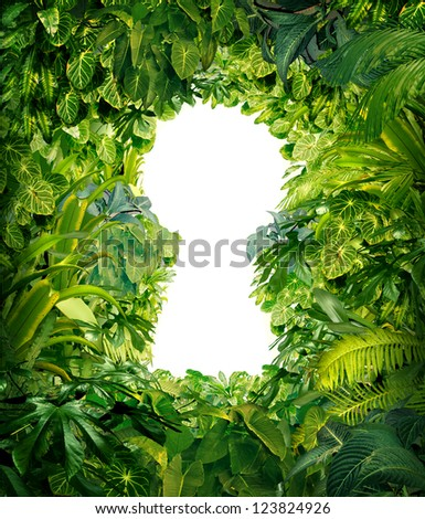 Out of the jungle as a nature concept of freedom and success from chaos and confusion with a thick green rain forest as a group of tropical plants in the shape of a blank white glowing key hole. - stock photo
