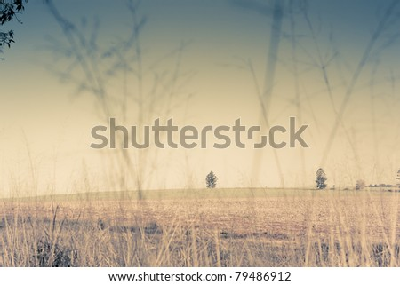 outback fields - stock photo