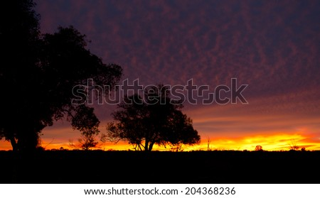 Outback Sunrise - Beginning of a new day in the Australian outback - stock photo
