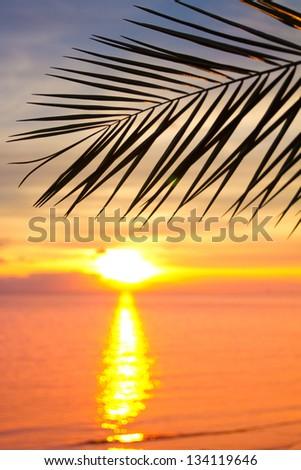 Outdoor Bliss Sunset - stock photo
