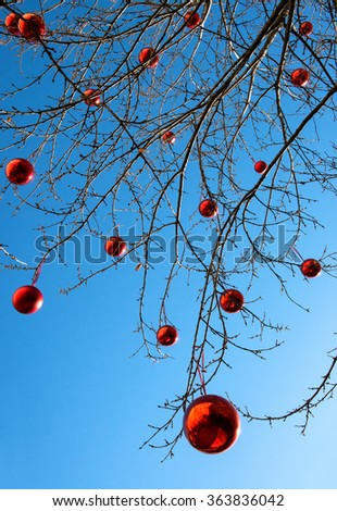 Outdoor decorated Christmas tree with its bare branches hung with colorful red Xmas baubles to celebrate the holiday season against a blue sky background - stock photo