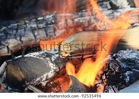 Outdoor Fire - stock photo