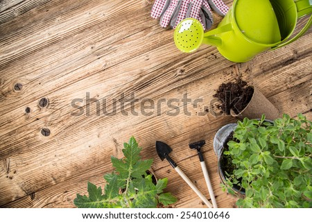 Outdoor gardening tools and herbs, close-up. - stock photo