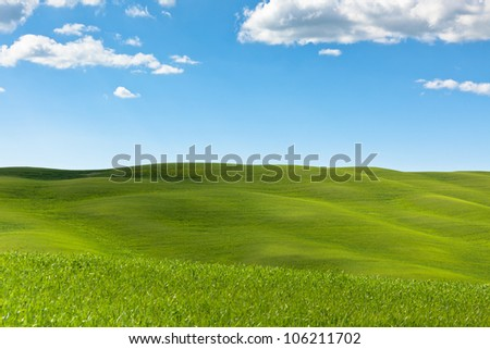 Outdoor green field view with blue sky and clouds. Tuscan Val d'Orcia background - stock photo