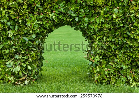 Outdoor horizontal shooting hedges with grass and arch - stock photo