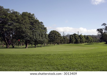 Outdoor Nature Golf Course On A Bright Summer Day - stock photo