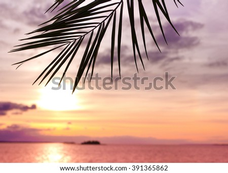 Outdoor Paradise Branch  - stock photo