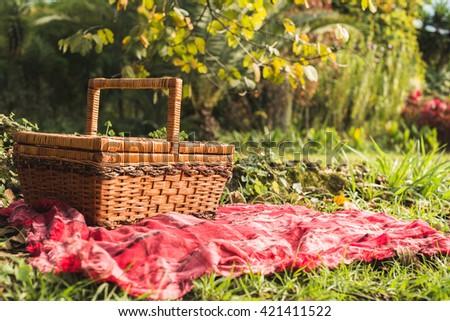 Outdoor Picnic - stock photo