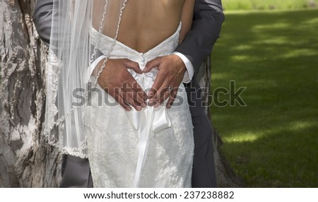 Outdoor rear view photo of man's hands forming heart-shape on bride's dress - stock photo