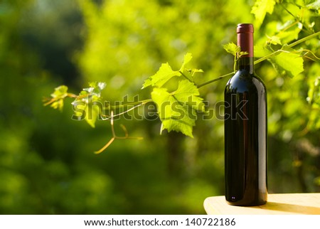 Outdoor shot of a bottle of red wine in the vineyard - stock photo