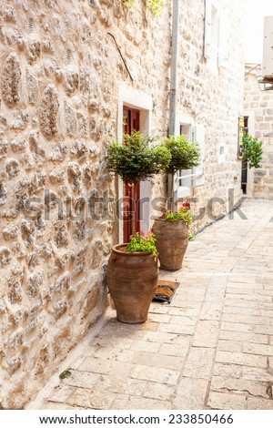Outdoor shot of two trees in pots growing on sides of door at stone wall - stock photo