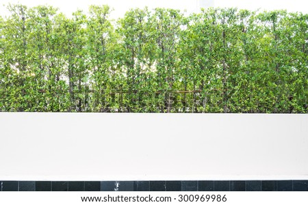 outdoor white fence hedge and tree background