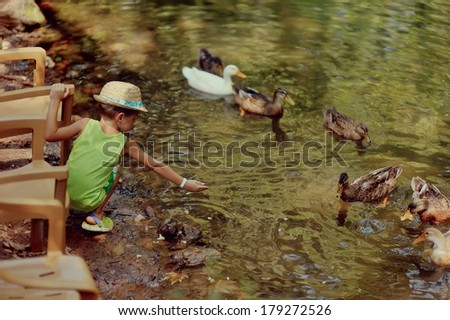 Outdoors the pond with ducks cheerful little boy in straw hat - stock photo