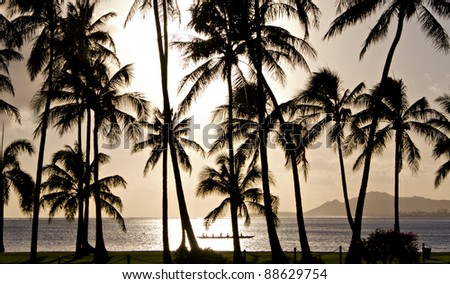 Outrigger canoe paddling behind palm trees in Hawaii - stock photo