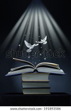 Over an open book flies pair of white doves. Religious concept. - stock photo