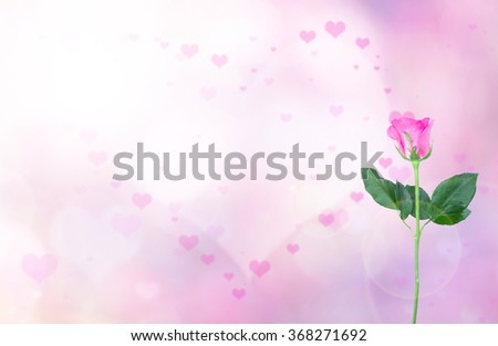 Over blur pink flower with De focused heart bokeh textures valentine day background with light flare and rose, art, love, pink love, sweetheart, valentine day concept. backdrop, Happy valentine day - stock photo