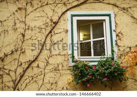 Overgrown traditional Austrian window frame decorated with flowers