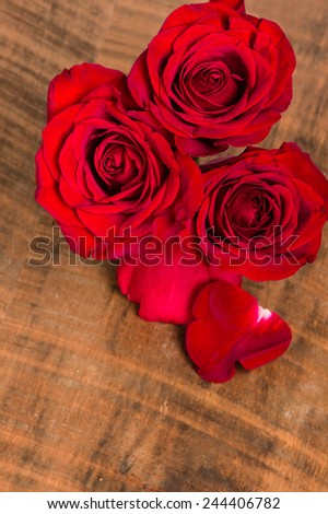 Overhead of a group of blooming red roses - stock photo