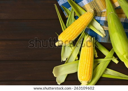 Overhead shot of raw sweet corn cobs photographed on dark wood with natural light - stock photo
