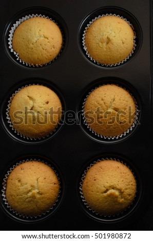 Overhead shot of six home baked plain golden vanilla cup cakes in bun tin.