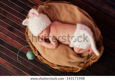 Overhead view of a 13 day old newborn baby girl wearing a white, crocheted kitten costume and sleeping on her tummy in a basket.