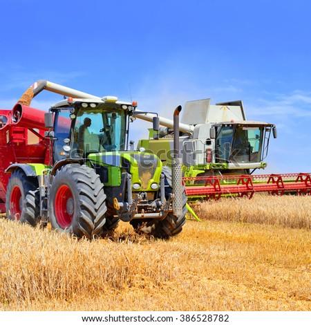 Overloading grain harvester into the grain tank of the tractor trailer. - stock photo